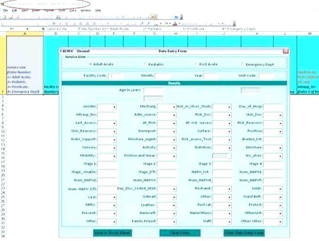 excel-data-entry-form-design