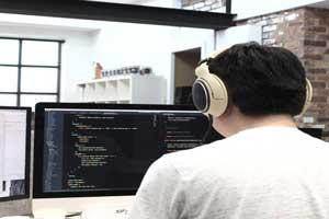 who-is-web-developer