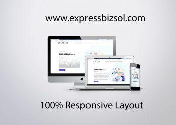 expressbizsol.com responsive layout